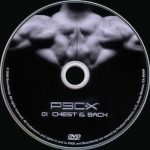 P90X Chest and Back