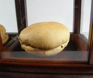 7 Year Old McDonald Hamburger