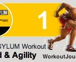 Insanity Asylum Speed Agility Workout
