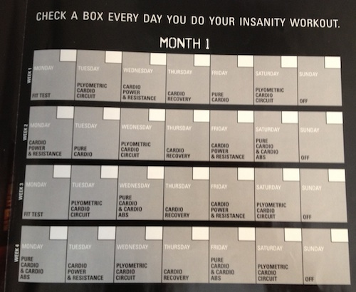 Insanity Workout Review Its Like Insane And Stuff  Brad Gibala