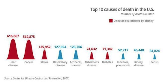 Top 10 Causes Of Death In U.S 2007