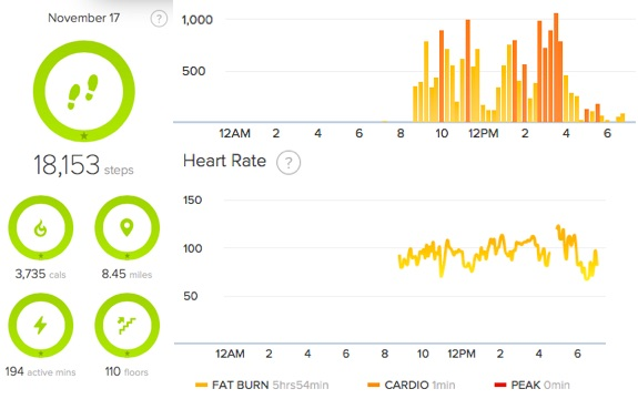 Fitbit Charge HR Bathroom Demo Day
