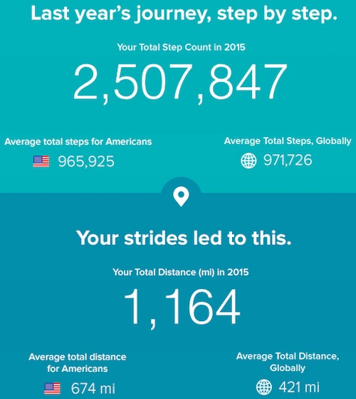 2015 Fitbit Year End Stats