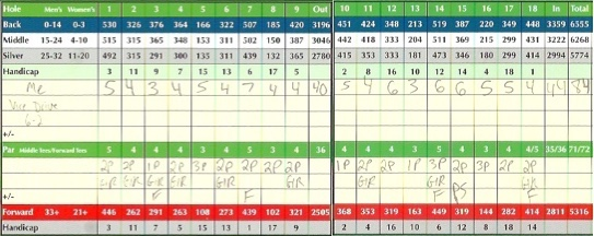 Vice Drive Golf Ball Score