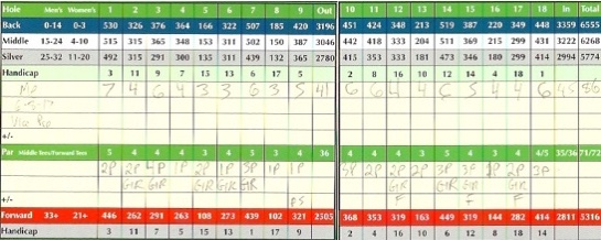 Vice Pro Golf Ball Score
