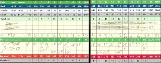 Vice Tour Golf Ball Score