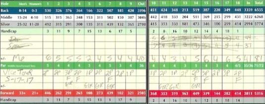 Vice Tour Golf Ball Score