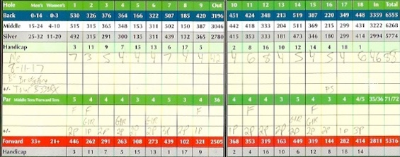 Bridgestone Tour B330RX Golf Ball Score