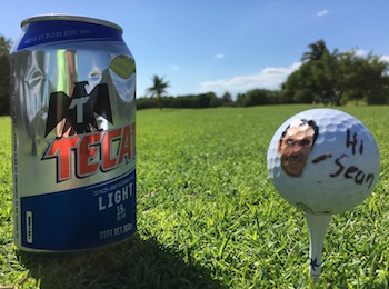 Iberostar Golf Course Vice Golf Ball
