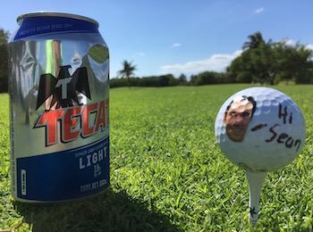 Iberostar Golf Course Vice Golf Ball