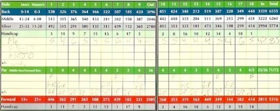 Nike Mojo Golf Ball Score