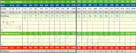 Nike PD Long Yellow Score