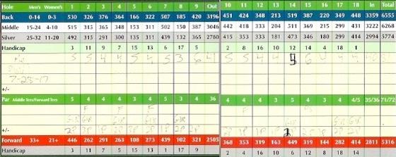 Titleist Pro V1 Golf Ball Score