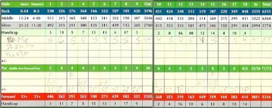Titleist Pro V1x Golf Ball Score