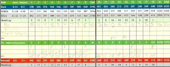 Titleist Velocity Golf Ball Score