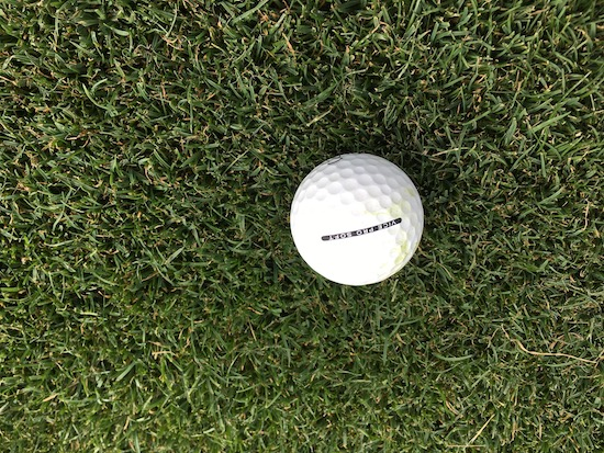 Vice Pro Soft Golf Ball Fairway