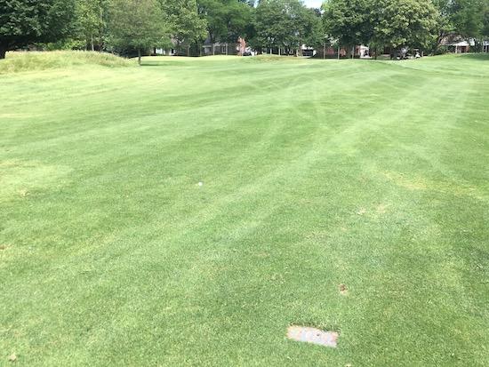 Bandit SB Golf Ball 6th Hole