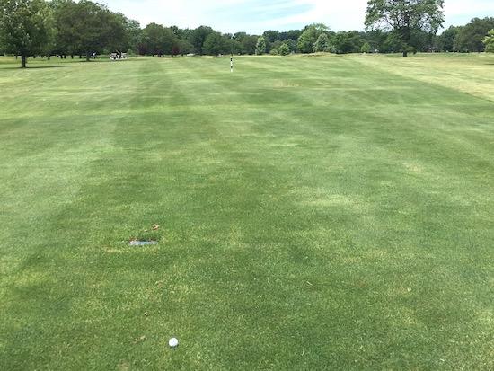 Bandit SB Golf Ball Driver 10th Hole