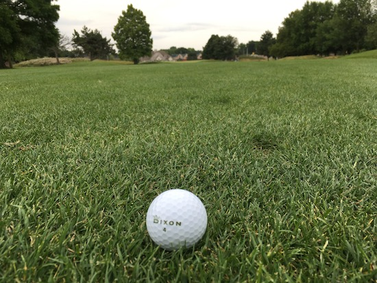 Dixon Earth Golf Ball Chilling In Fairway