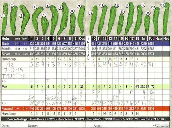 TRUETEE Golf Tee Score