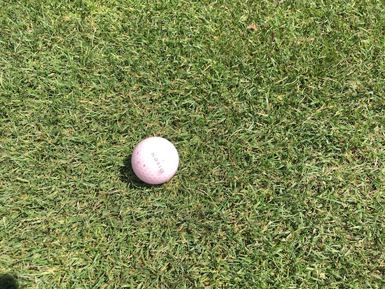 Dixon Spirit Golf Ball In Fairway