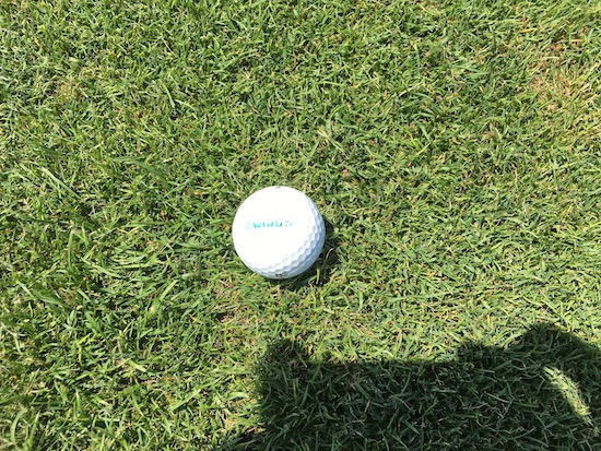 Dixon Wind Golf Ball Fairway